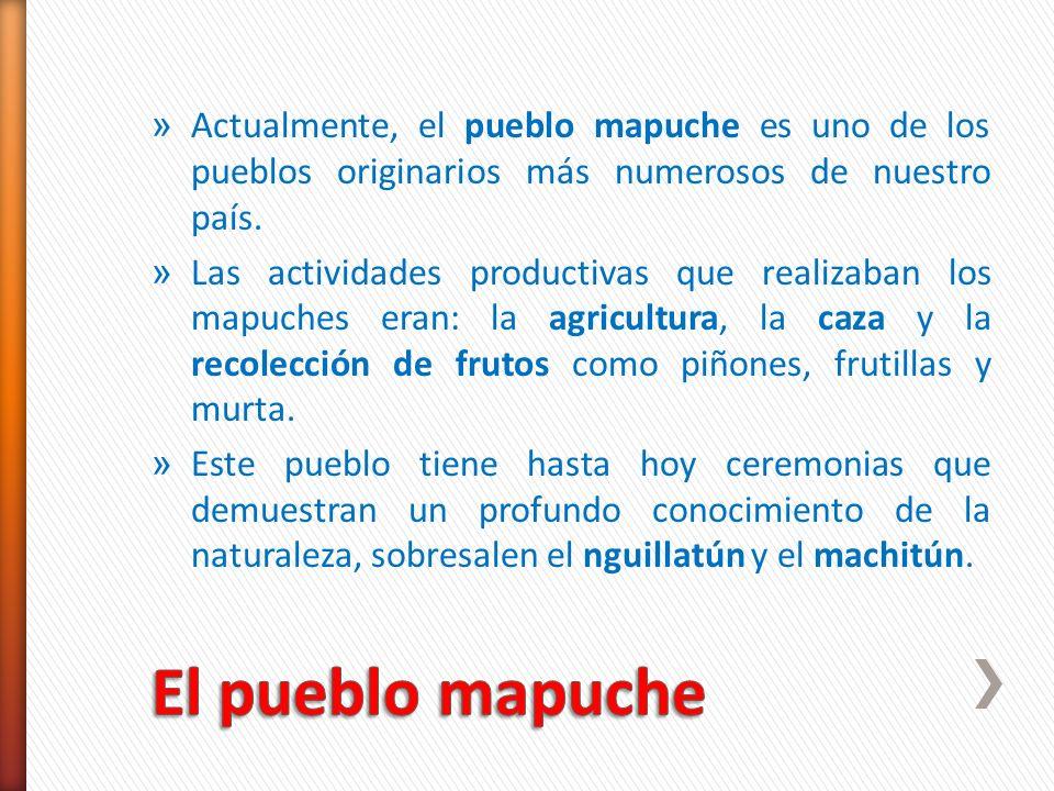 Actualmente, el pueblo mapuche es uno de los pueblos originarios más numerosos de nuestro país.