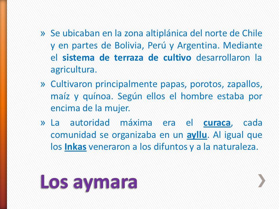 Se ubicaban en la zona altiplánica del norte de Chile y en partes de Bolivia, Perú y Argentina. Mediante el sistema de terraza de cultivo desarrollaron la agricultura.