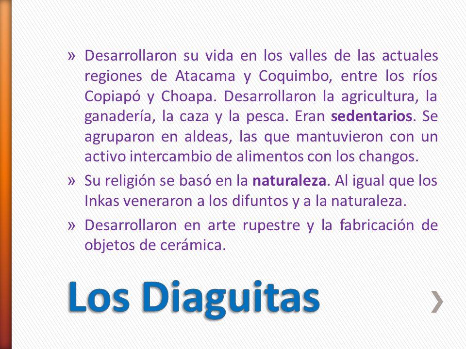 Desarrollaron su vida en los valles de las actuales regiones de Atacama y Coquimbo, entre los ríos Copiapó y Choapa. Desarrollaron la agricultura, la ganadería, la caza y la pesca. Eran sedentarios. Se agruparon en aldeas, las que mantuvieron con un activo intercambio de alimentos con los changos.