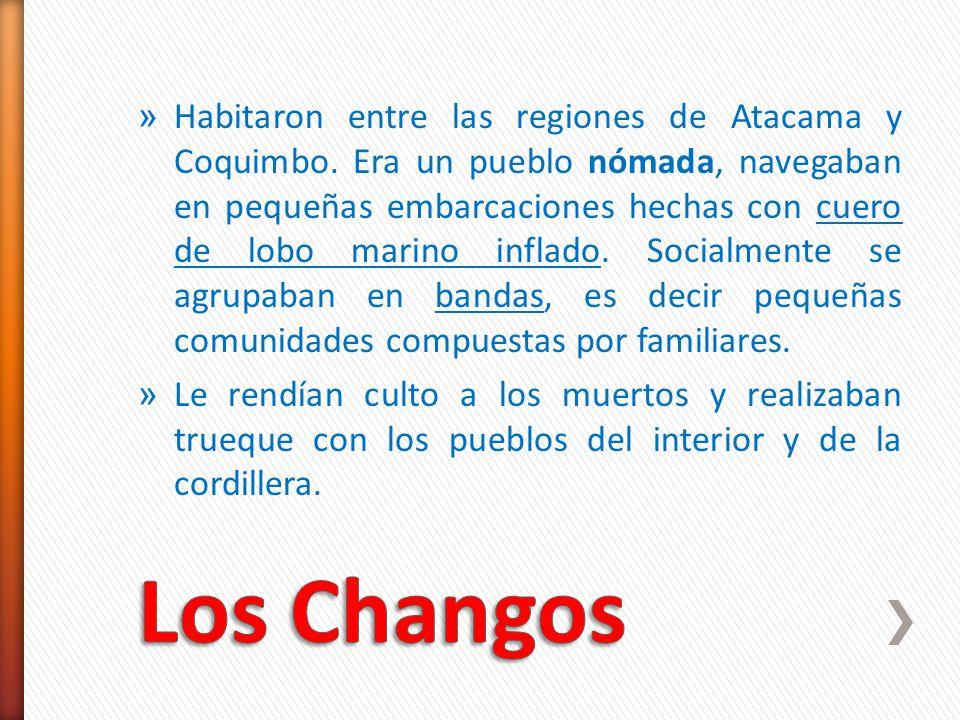 Habitaron entre las regiones de Atacama y Coquimbo