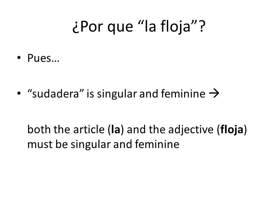 ¿Por que la floja Pues… sudadera is singular and feminine 