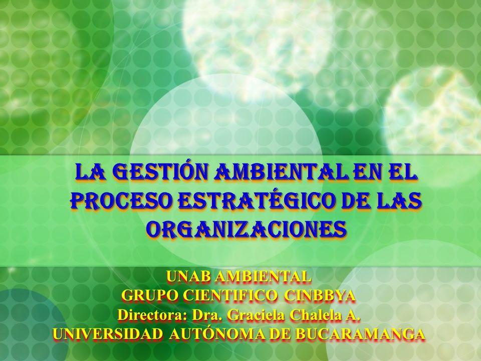 LA GESTIÓN AMBIENTAL EN EL PROCESO ESTRATÉGICO DE LAS ORGANIZACIONES