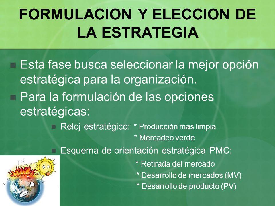 FORMULACION Y ELECCION DE LA ESTRATEGIA