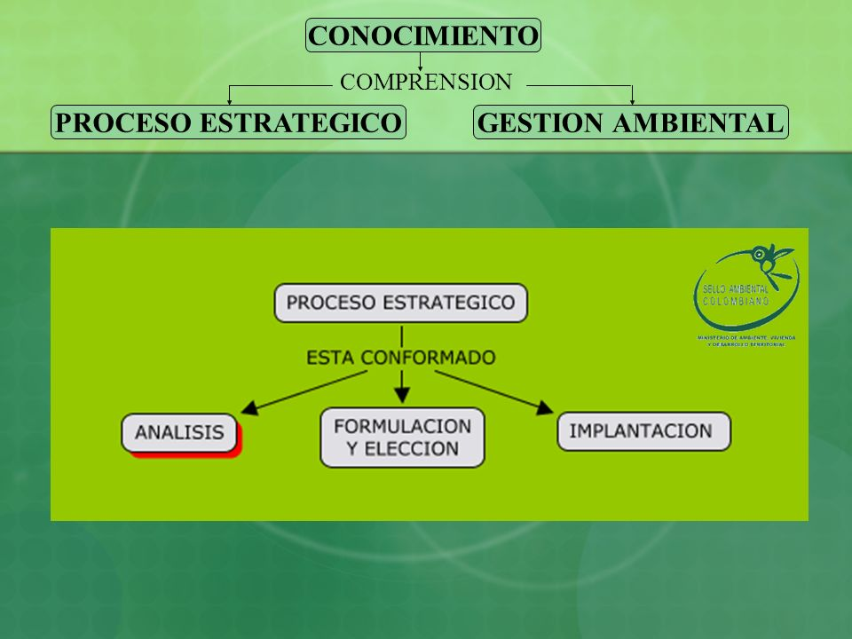 CONOCIMIENTO PROCESO ESTRATEGICO GESTION AMBIENTAL