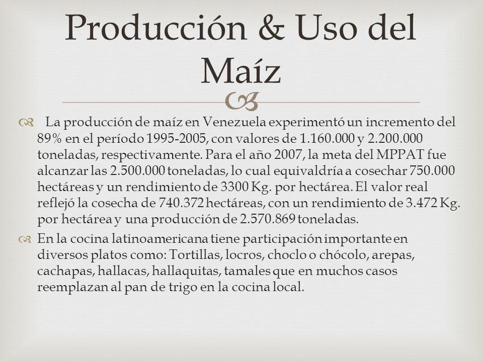 Producción & Uso del Maíz