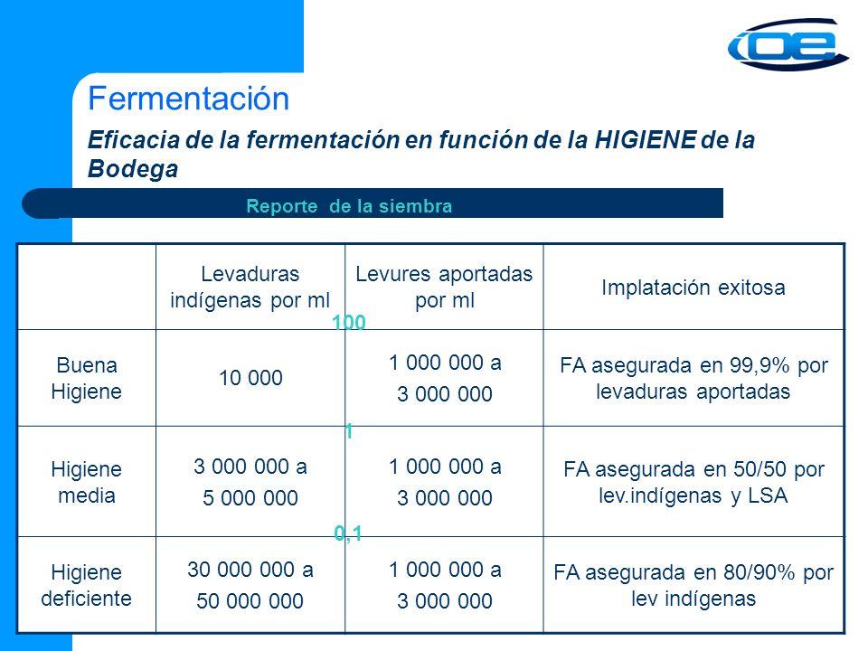 Fermentación Eficacia de la fermentación en función de la HIGIENE de la Bodega. Reporte de la siembra.