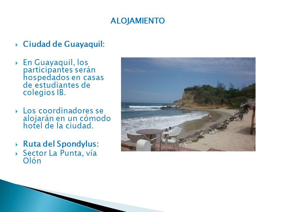 ALOJAMIENTO Ciudad de Guayaquil: En Guayaquil, los participantes serán hospedados en casas de estudiantes de colegios IB.