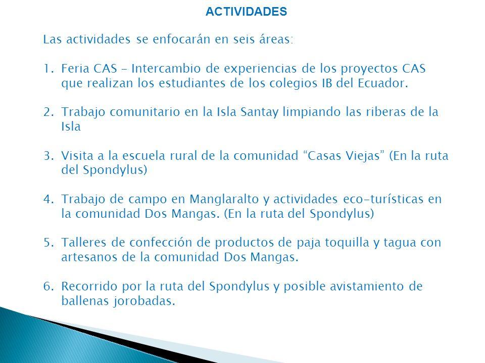 ACTIVIDADES Las actividades se enfocarán en seis áreas:
