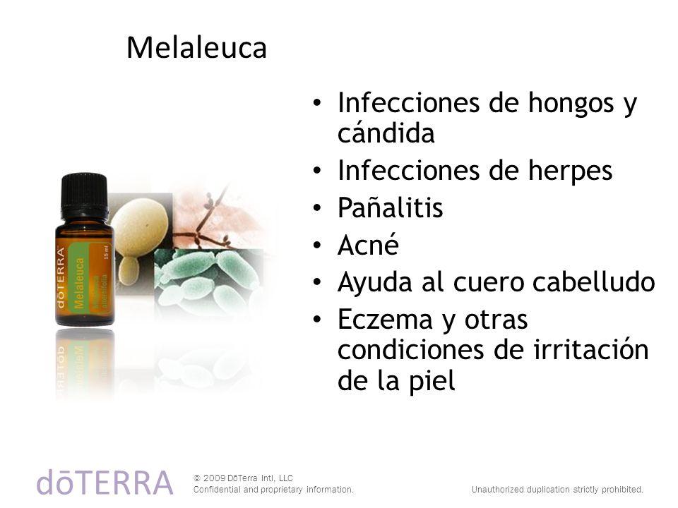 dōTERRA Melaleuca Infecciones de hongos y cándida