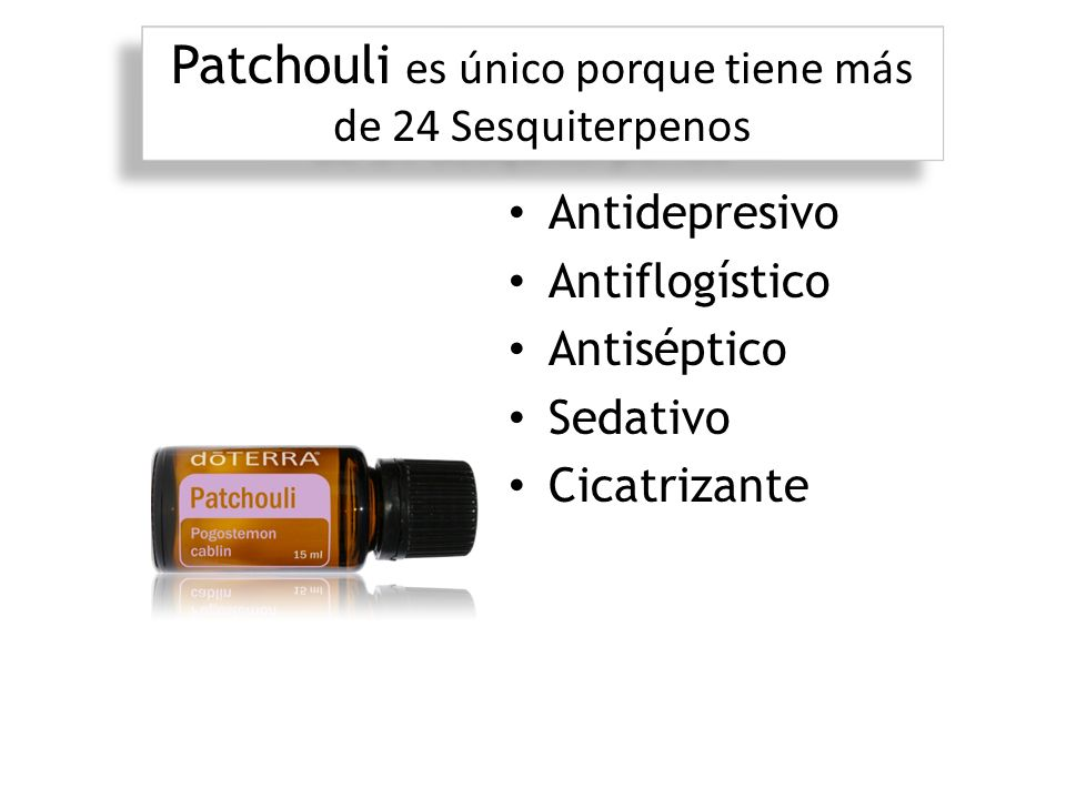 Patchouli es único porque tiene más de 24 Sesquiterpenos
