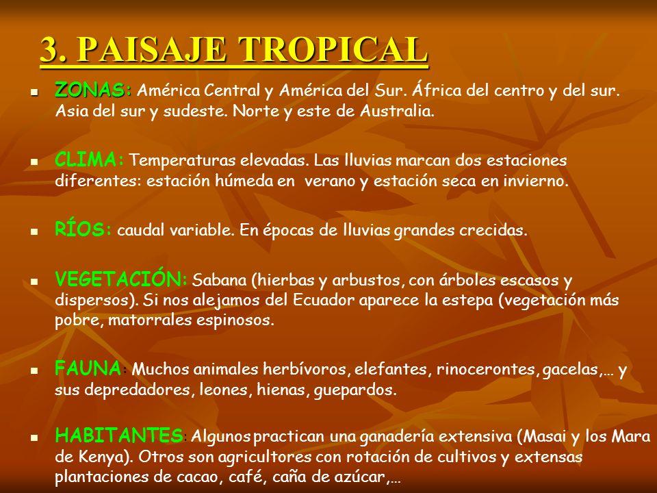 3. PAISAJE TROPICAL ZONAS: América Central y América del Sur. África del centro y del sur. Asia del sur y sudeste. Norte y este de Australia.