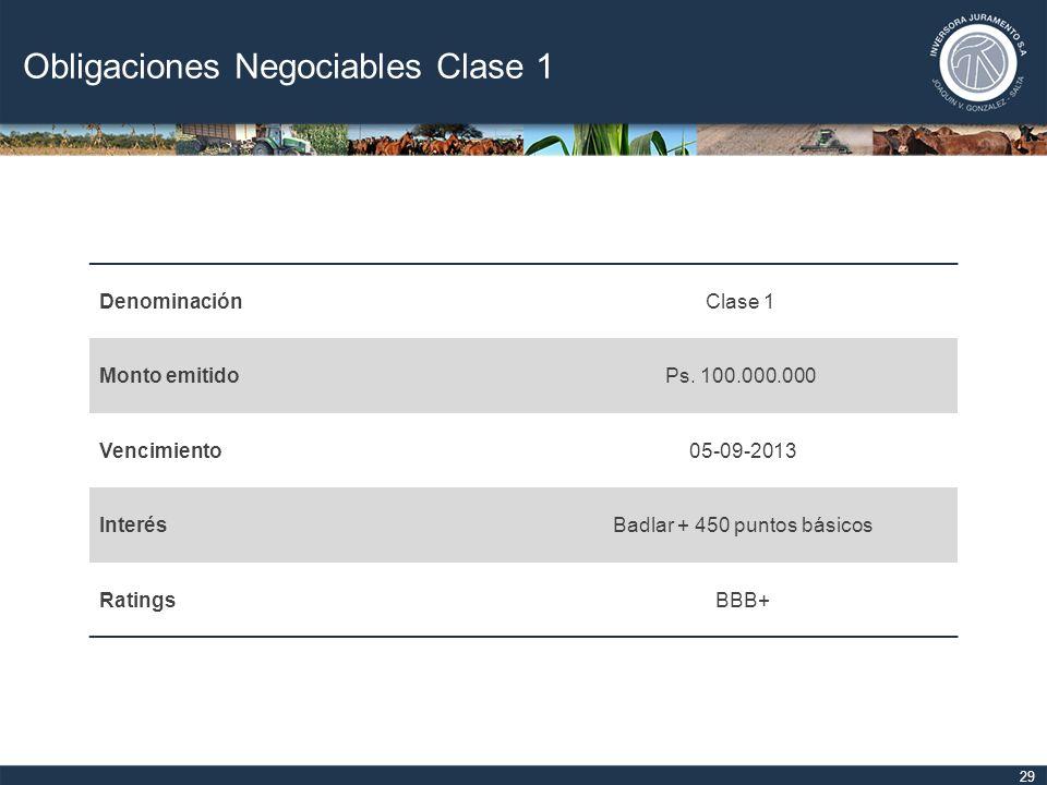 Obligaciones Negociables Clase 1