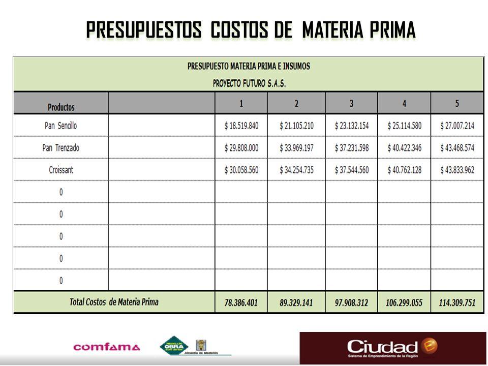 PRESUPUESTOS COSTOS DE MATERIA PRIMA