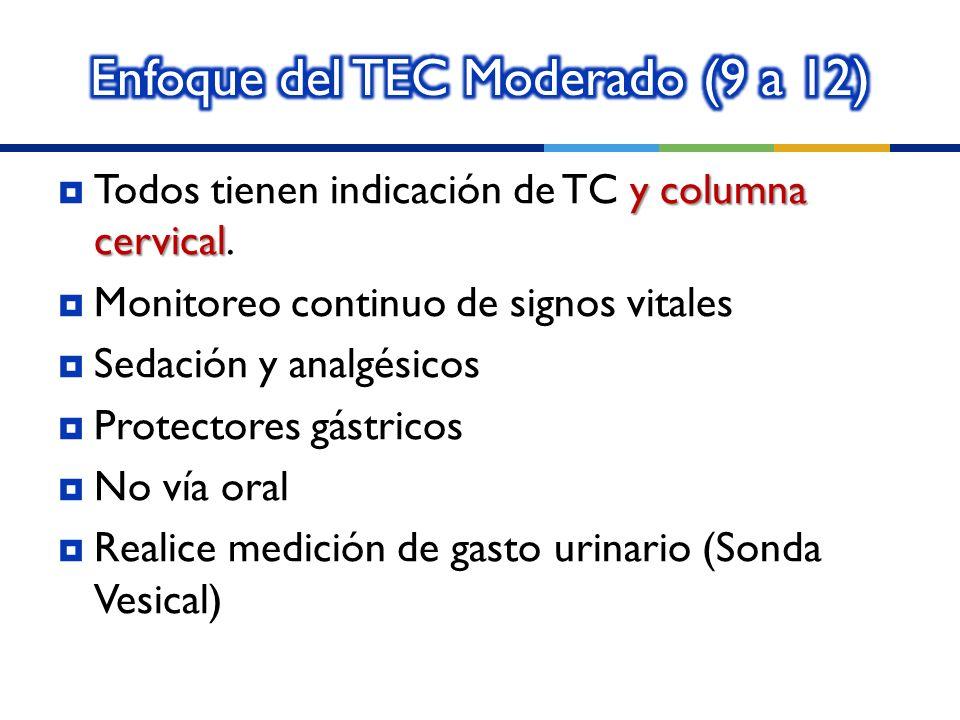 Enfoque del TEC Moderado (9 a 12)