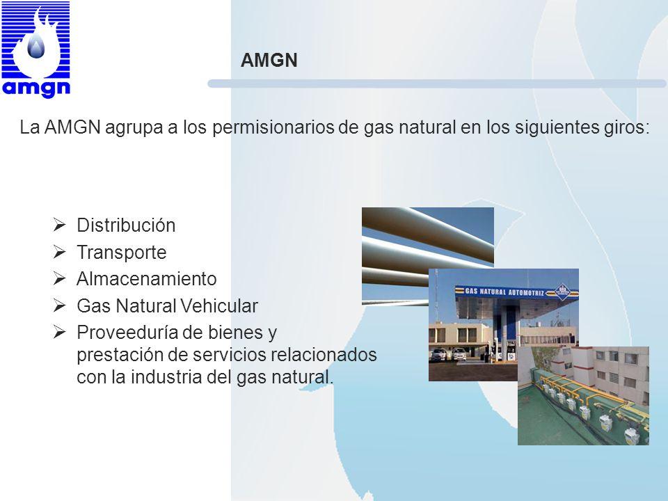 AMGN La AMGN agrupa a los permisionarios de gas natural en los siguientes giros: Distribución. Transporte.