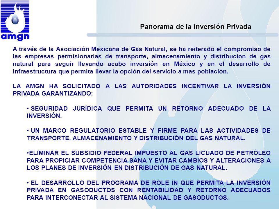 Panorama de la Inversión Privada