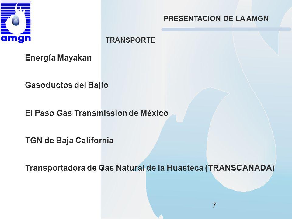 El Paso Gas Transmission de México