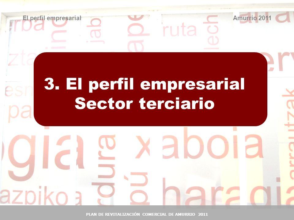 3. El perfil empresarial Sector terciario