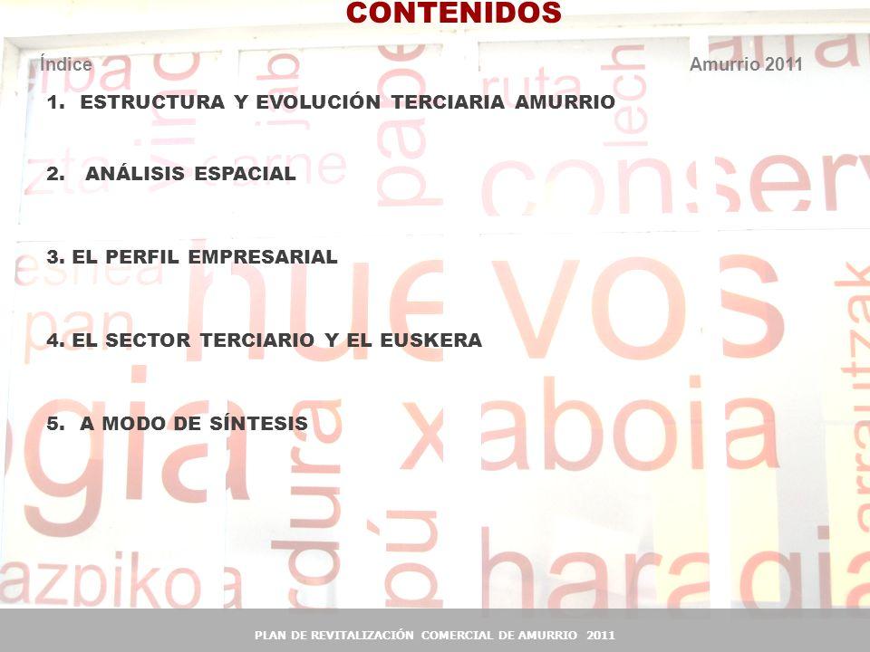PLAN DE REVITALIZACIÓN COMERCIAL DE AMURRIO 2011