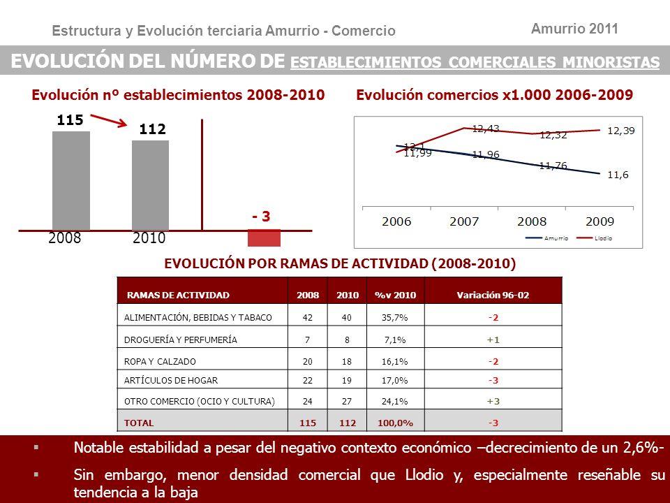 EVOLUCIÓN POR RAMAS DE ACTIVIDAD (2008-2010)