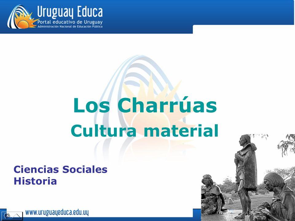 Los Charrúas Cultura material