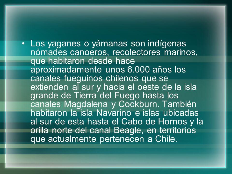 Los yaganes o yámanas son indígenas nómades canoeros, recolectores marinos, que habitaron desde hace aproximadamente unos 6.000 años los canales fueguinos chilenos que se extienden al sur y hacia el oeste de la isla grande de Tierra del Fuego hasta los canales Magdalena y Cockburn.