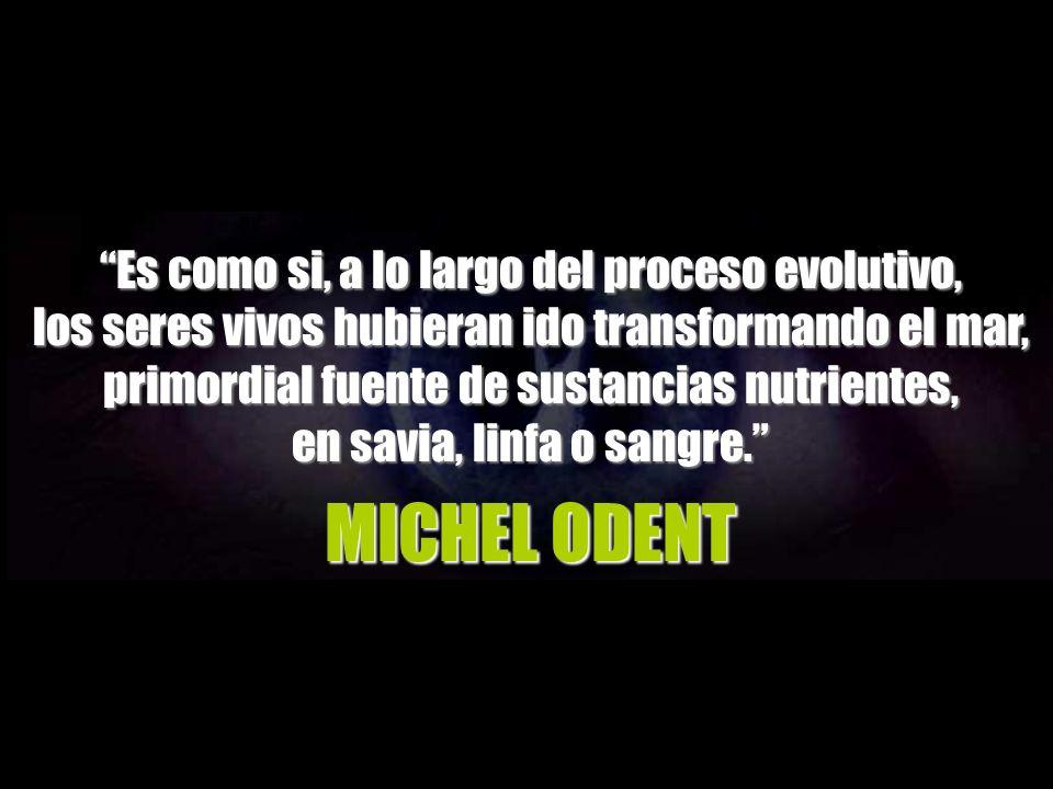 MICHEL ODENT Es como si, a lo largo del proceso evolutivo,
