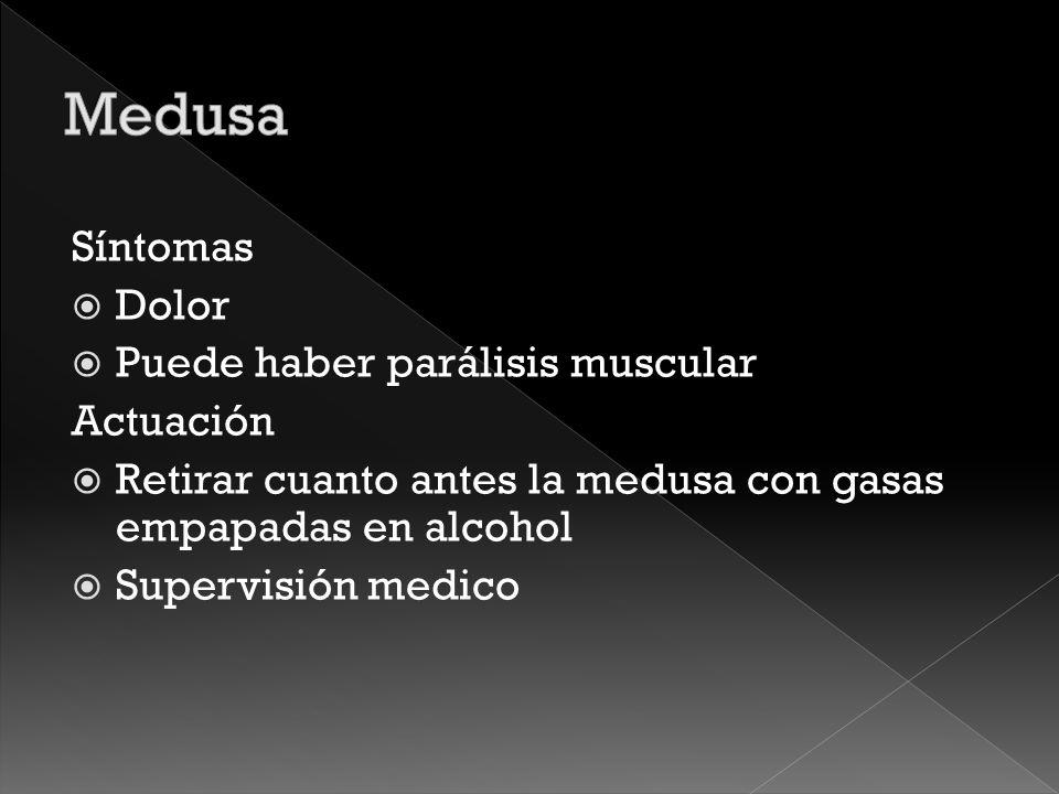 Medusa Síntomas Dolor Puede haber parálisis muscular Actuación