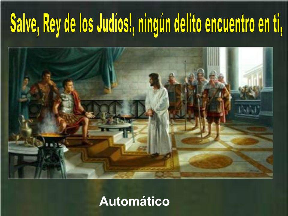 Salve, Rey de los Judíos!, ningún delito encuentro en ti,