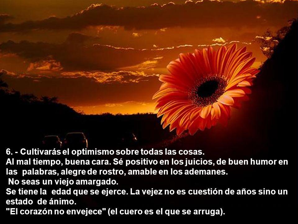 6. - Cultivarás el optimismo sobre todas las cosas.