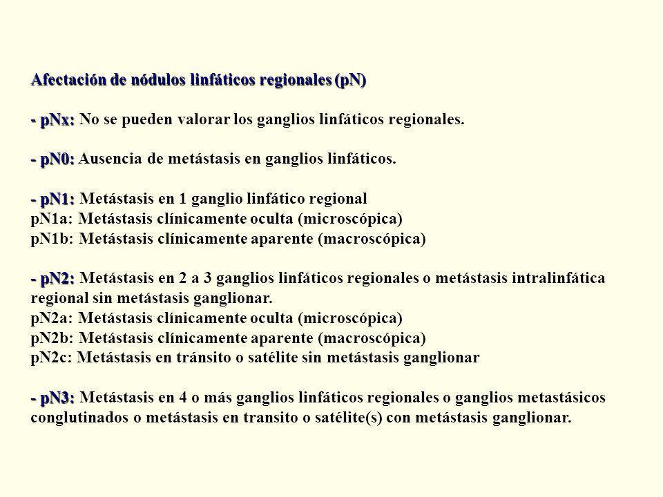 Afectación de nódulos linfáticos regionales (pN)