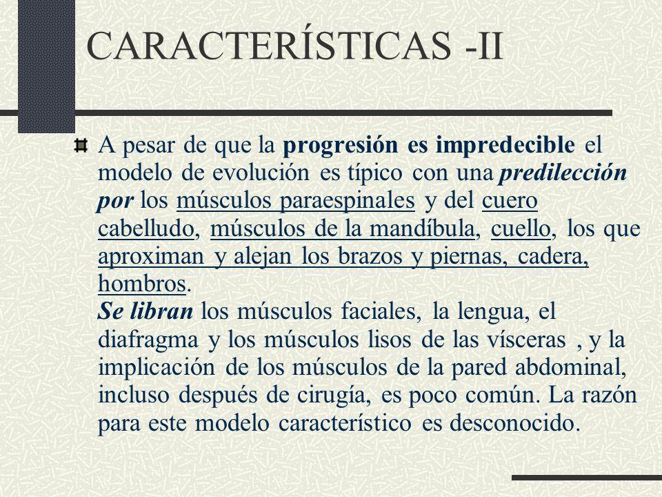 CARACTERÍSTICAS -II
