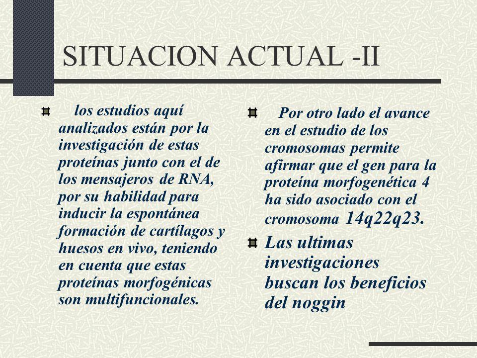 SITUACION ACTUAL -II