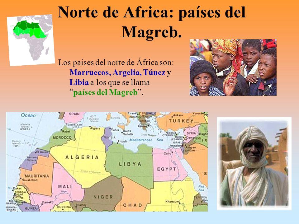 Norte de Africa: países del Magreb.