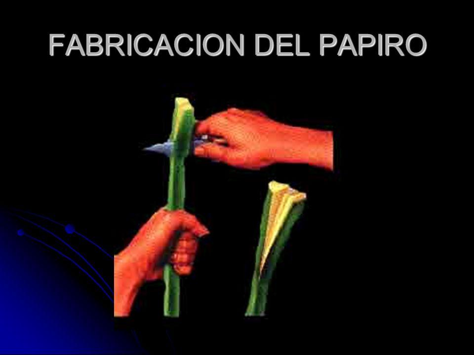 FABRICACION DEL PAPIRO