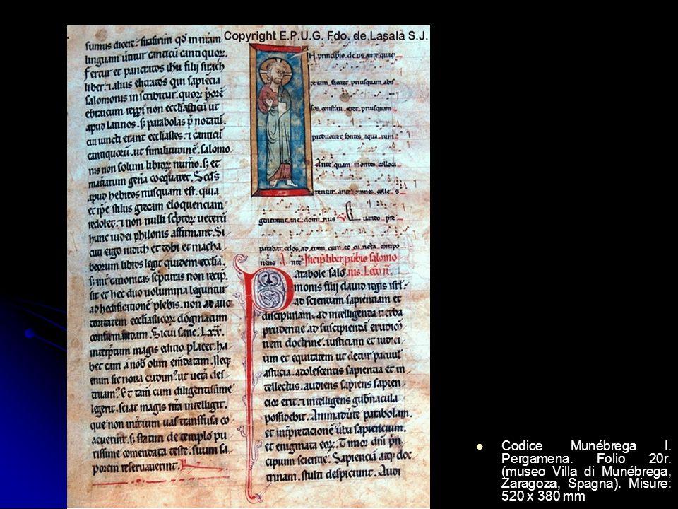 Codice Munébrega I. Pergamena. Folio 20r