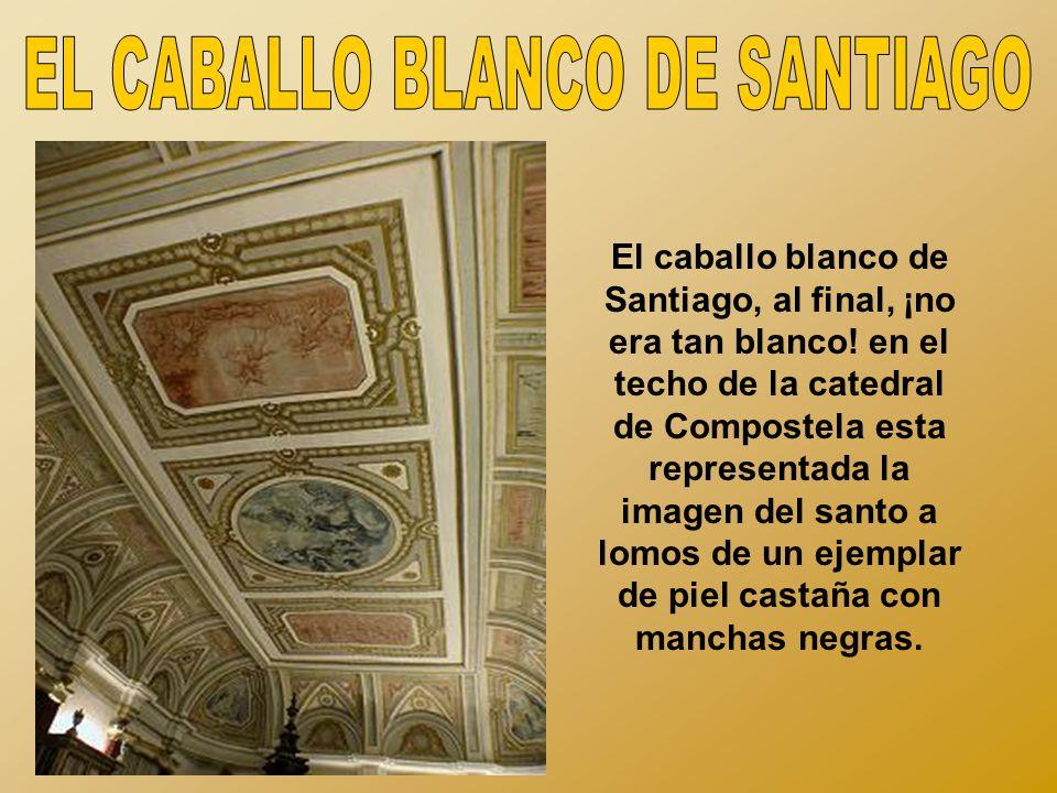 EL CABALLO BLANCO DE SANTIAGO