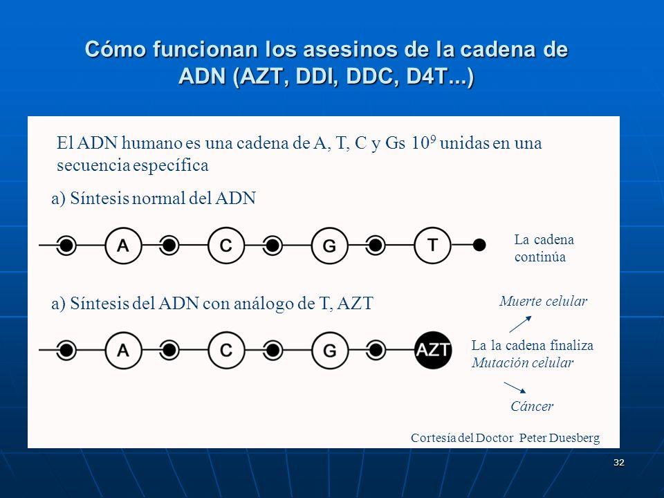 Cómo funcionan los asesinos de la cadena de ADN (AZT, DDI, DDC, D4T...)