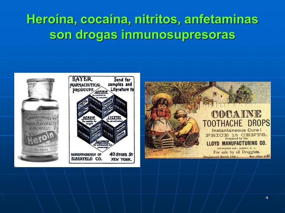 Heroína, cocaína, nitritos, anfetaminas son drogas inmunosupresoras