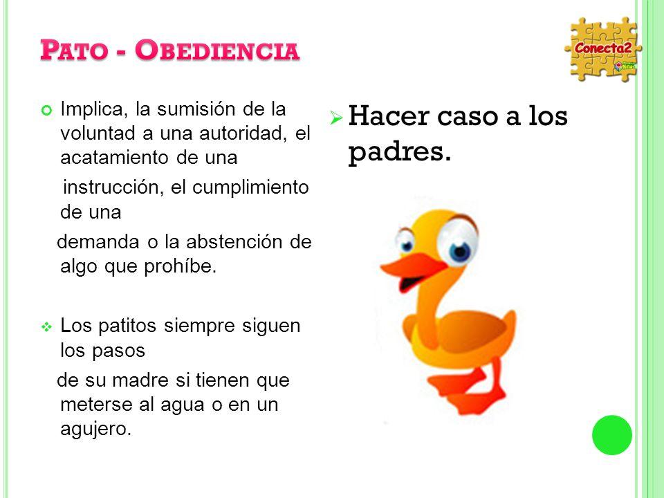 Pato - Obediencia Hacer caso a los padres.