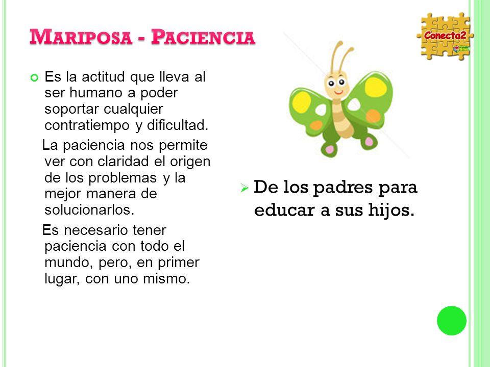 Mariposa - Paciencia De los padres para educar a sus hijos.