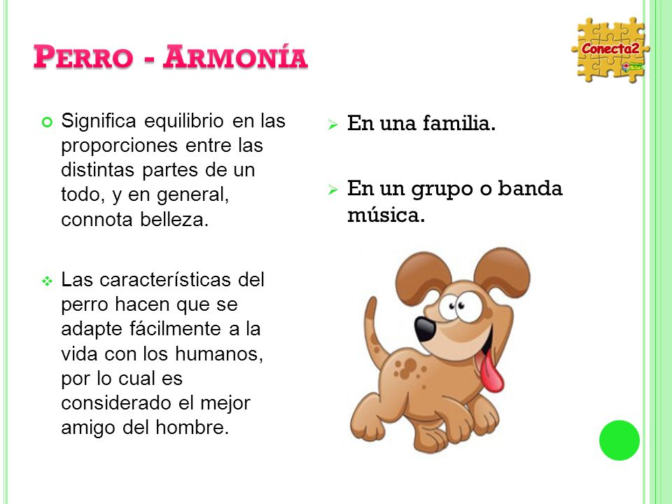 Perro - Armonía En una familia. En un grupo o banda música.