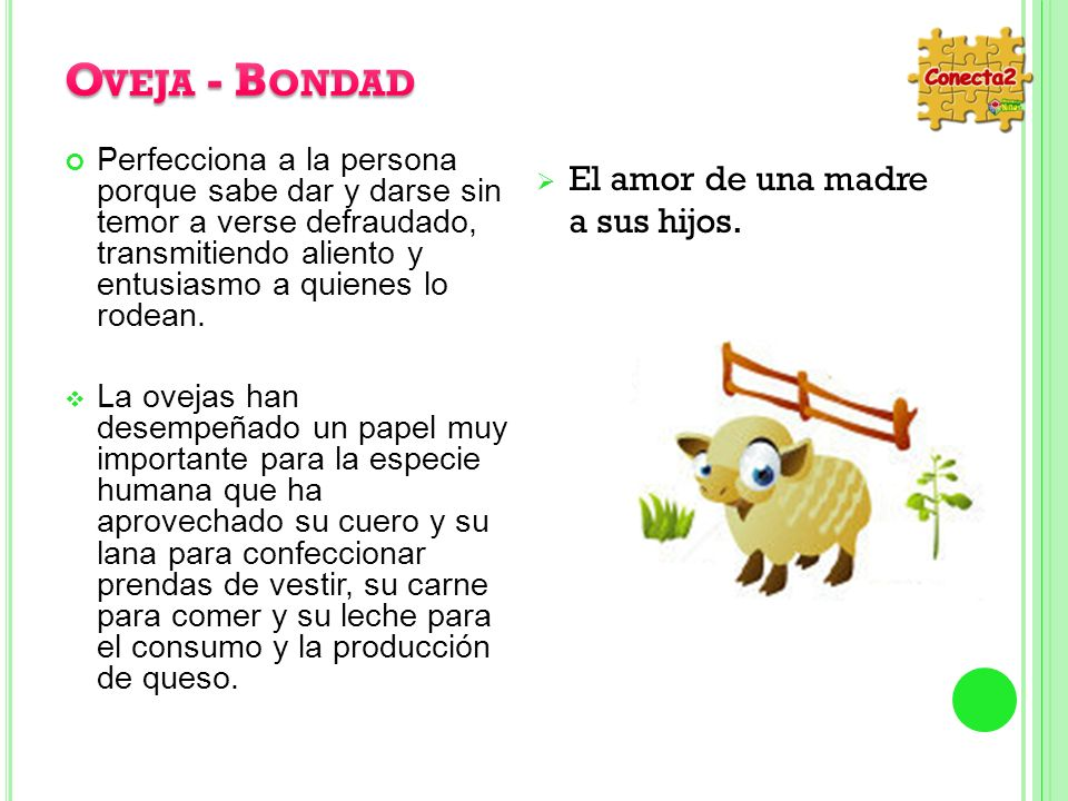 Oveja - Bondad El amor de una madre a sus hijos.