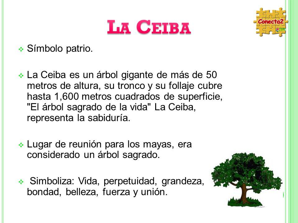 La Ceiba Símbolo patrio.