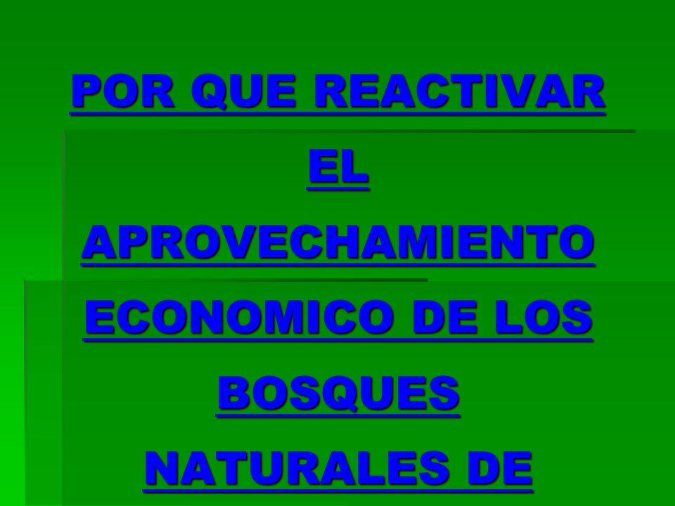POR QUE REACTIVAR EL APROVECHAMIENTO ECONOMICO DE LOS BOSQUES NATURALES DE SHIRINGA (CAUCHO NATURAL) EN EL MADRE DE DIOS