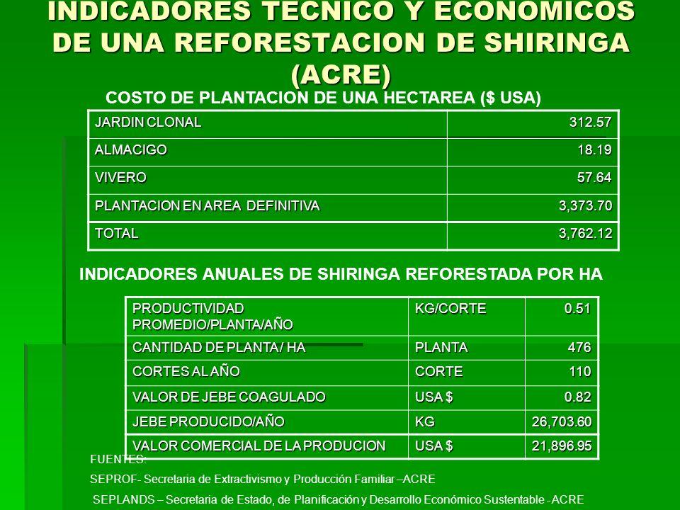 INDICADORES TECNICO Y ECONOMICOS DE UNA REFORESTACION DE SHIRINGA (ACRE)