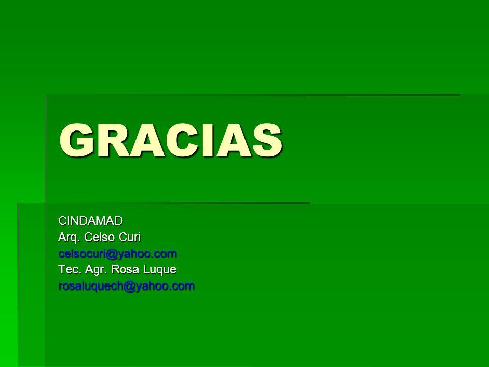 GRACIAS CINDAMAD Arq. Celso Curi celsocuri@yahoo.com