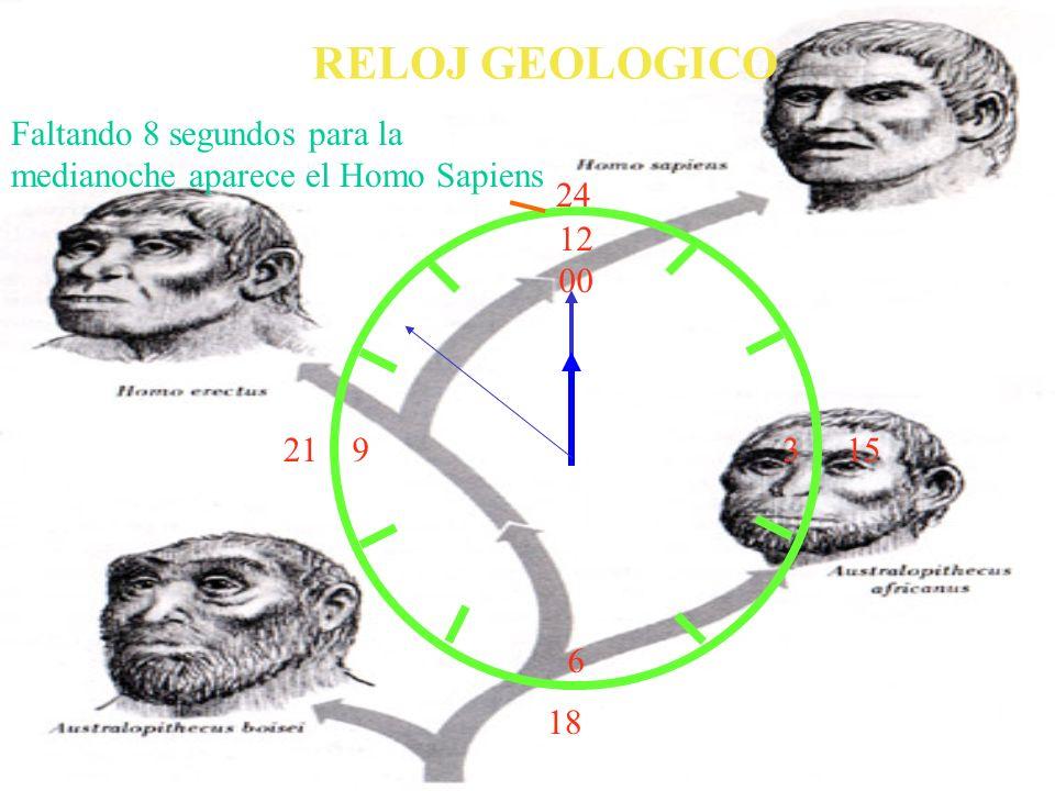 RELOJ GEOLOGICO Faltando 8 segundos para la medianoche aparece el Homo Sapiens. 24. 12. 00. 3. 6.