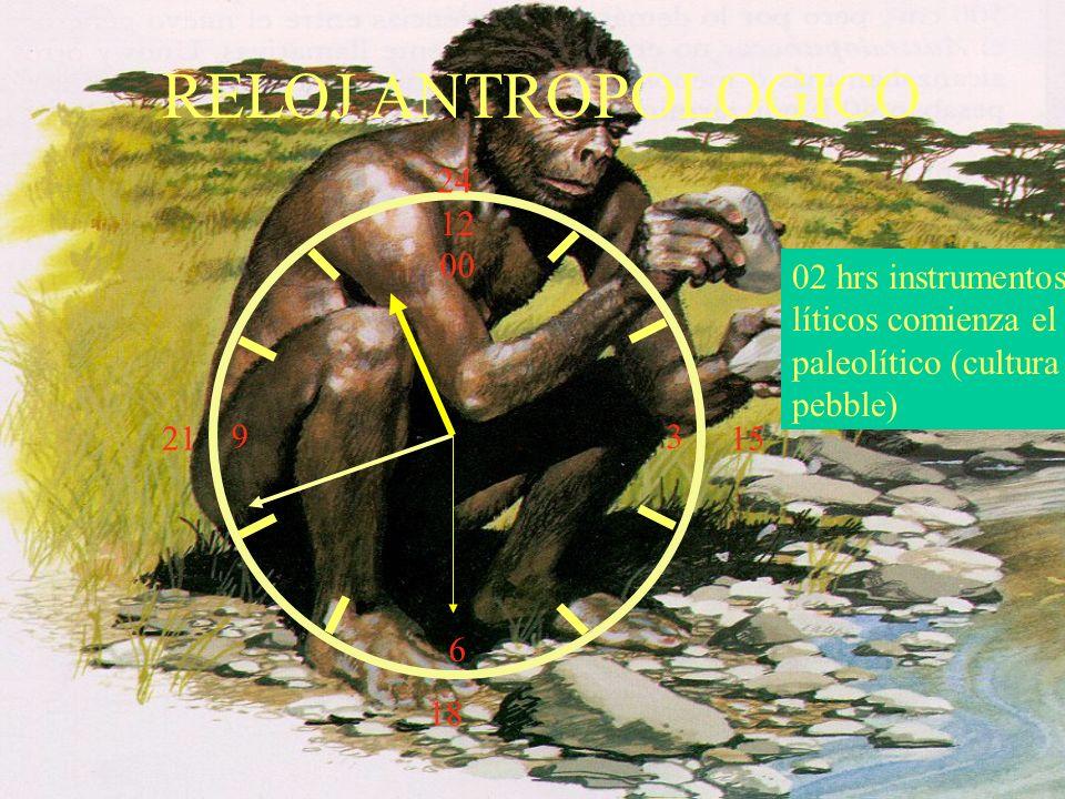 RELOJ ANTROPOLOGICO 24. 12. 00. 3. 6. 02 hrs instrumentos líticos comienza el paleolítico (cultura pebble)
