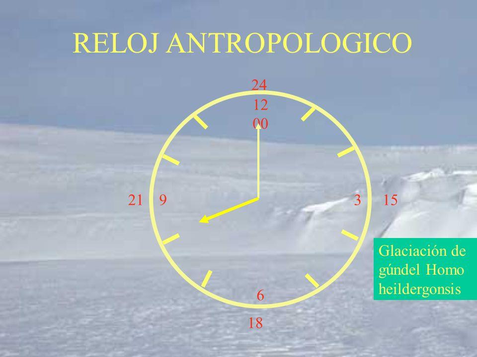 RELOJ ANTROPOLOGICO 24 12 00 3 6 21 15 Glaciación de gúndel Homo heildergonsis 18